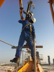 Un bonjour du Qatar Mini_121563IMG2224