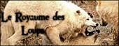 Publicité de La Guerre des Meutes Mini_123875654630ilogo