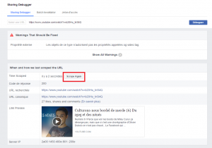 [Solution] Vignette youtube qui ne s'affiche pas sur facebook  Mini_124439scraaaapp