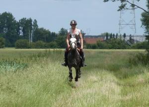 Mettre son cheval dans les jambes Mini_189657P1030298