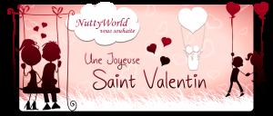 Concours design Saint-Valentin ♥ Mini_240664banniStV