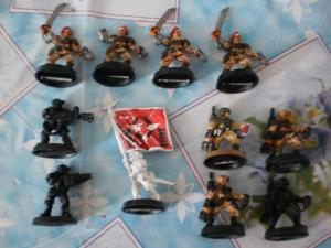 [Vente] Warmachine , warhammer . Mini_257571PICT0310