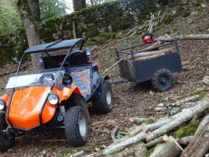 10000 bornes en fun buggy 340... Mini_348699DSC04679