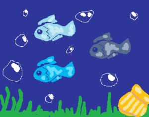les plus beaux poissons du monde Mini_454212poisson