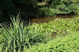 Canal de la Bruche Mini_475350Bruche8