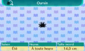 [GUIDE] Les créatures marines. Mini_520991Oursin