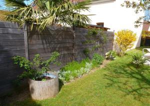 quelques plantouilles au jardin, en ce moment ! Mini_625758521