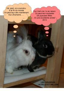 je vous presente Achille et Willow (cohanniversaire Achille p9) - Page 2 Mini_6279722voeux2013
