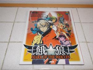 Collection Ryo Sakazaki Mini_667881DSCN0232