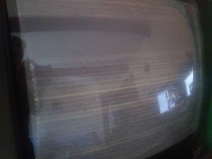 Borne Magnum Mini_744285961