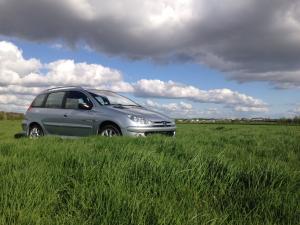[Supp059] Peugeot 206 SW QuickSilver 1.6i s16 - Résérvé Mini_748943135