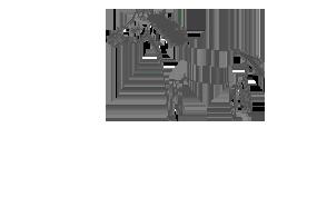 Nouvelles du vain combat × Hermès Mini_755113signaturefc