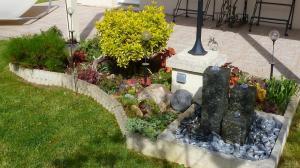 quelques plantouilles au jardin, en ce moment ! Mini_882276505