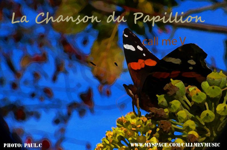 photo papillon? 523555papilloncallmev