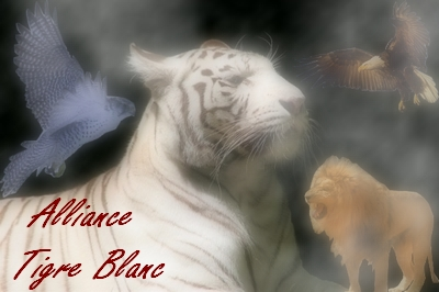 Alliance Tigre Blanc