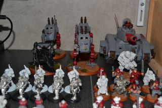 Le 251e Régiment de Garde Impériale 114583008