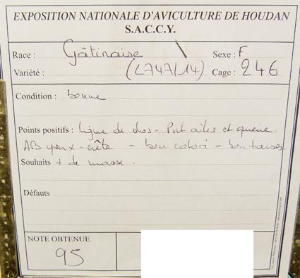 exposition d'aviculture Foire ST MATTHIEU 27 et 28 Septembre 2014 - Page 3 117120P1150720