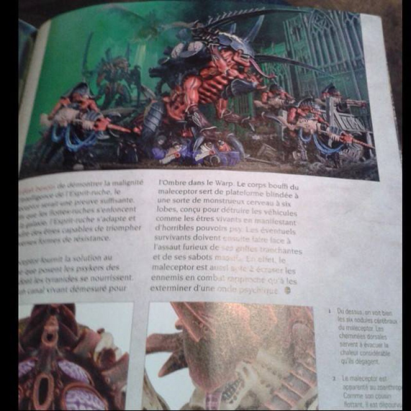 News Games Workshop - Tome 2 - Page 22 122203106125688592666307735893277346201118142284n