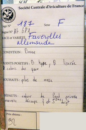 2014 - salon de l'Aviculture de Paris du 22/02/2014 au 02/03/214 - Page 4 126853P1130643