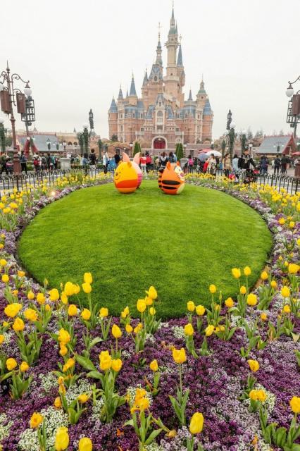 [Shanghai Disney Resort] Le Resort en général - le coin des petites infos  - Page 5 127800w454