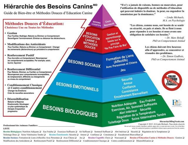 La pyramide de Maslow 132687Pyramidemaslowpourchien