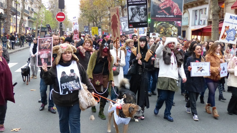 13 - Marche Contre La Fourrure - Paris 24 novembre 2012. 134899P1010884