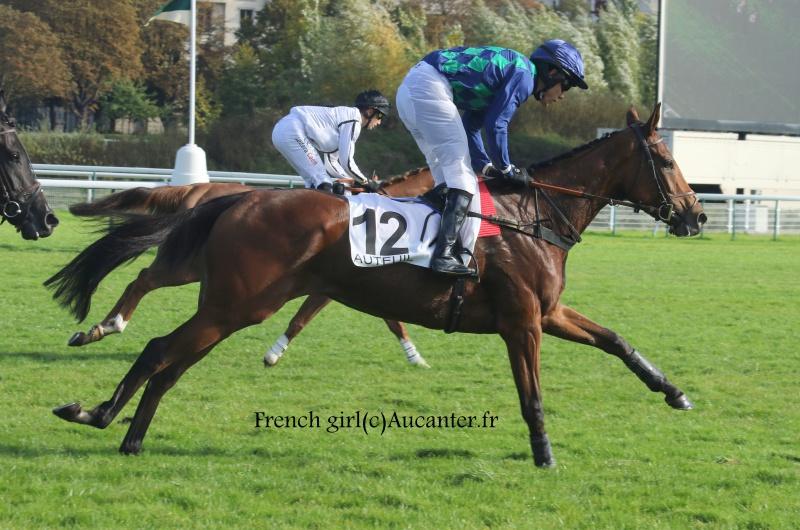 Photos Auteuil 15-10-2016 1353275J6A8749