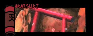 Naruto Shinobi Chronicles 135538Akatsuki