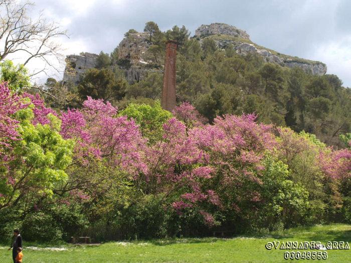 """La Vallée de St Pons """" La Vallée Rose """" à Gemenos Bouches du Rhône ♥♥♥ 14158611"""