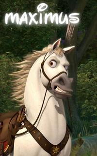 ♧ cadeau pour un cheval o/ 141982vavamax