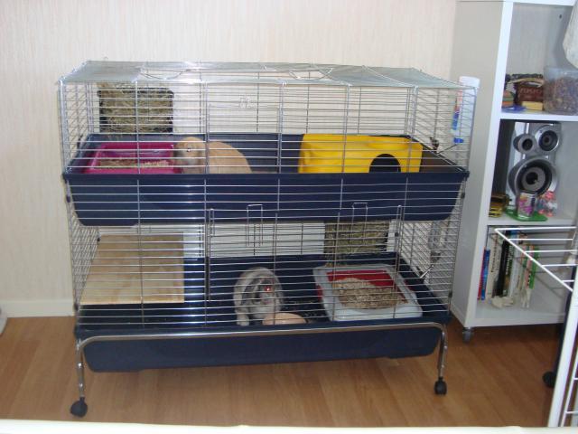 nouvelle cage pour mes loustics. Black Bedroom Furniture Sets. Home Design Ideas