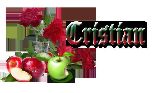 Nonbres con C 143204Cristian