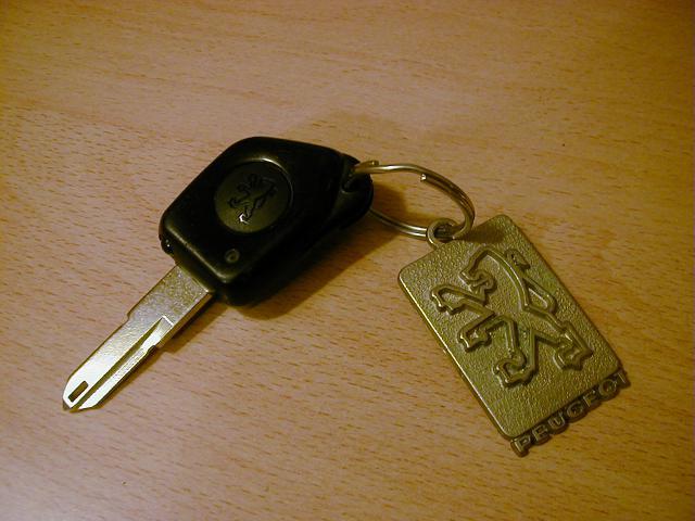 Vos clés de voitures (toutes marques) 149345P1010497