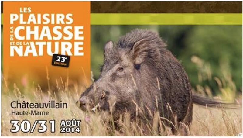 Salon de la chasse de Chateauvillain 2014 152067Capturedcran20140828064504