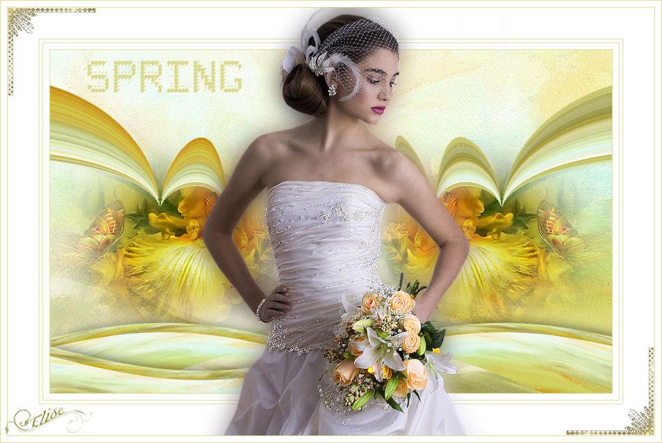 Spring(Psp) 152569femmedeAdrimar