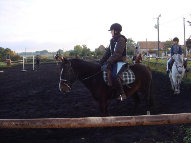 Comment avez vous rencontrer/acheter votre cheval? 155586nostra11jpg