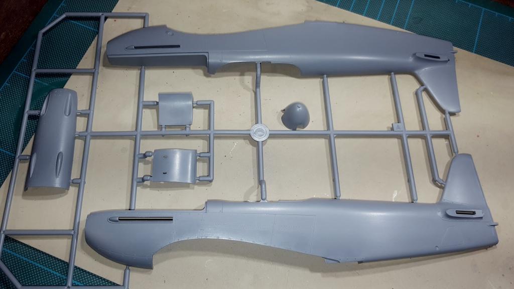 YAK 3 - Normandie Niemen 1/32 Special Hobby 15714020160913221802
