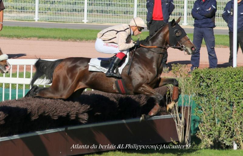 Photos Enghien 22-10-2016 Grand Steeple 1578215J6A9366