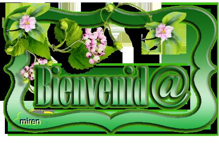 cartel bienvenid@ - Página 3 1578771Bienvenid