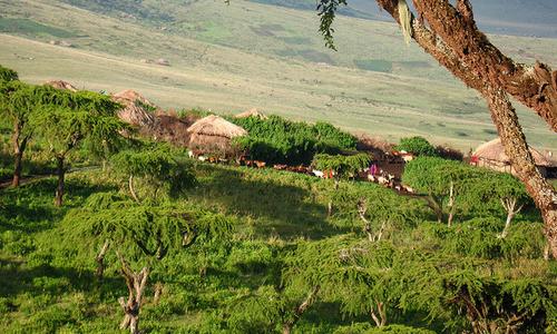 Tribu Masaï de l'Est