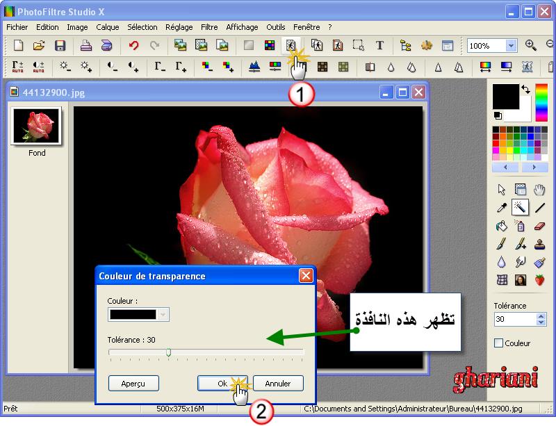 PhotoFiltre Studio X 10.9.2 161043rose1
