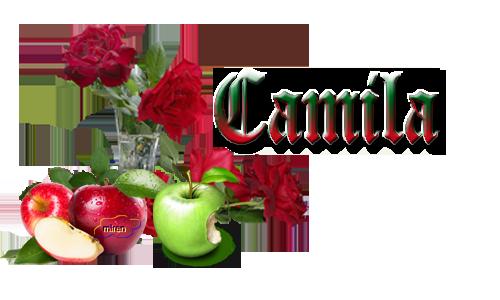 Nonbres con C 161778Camila