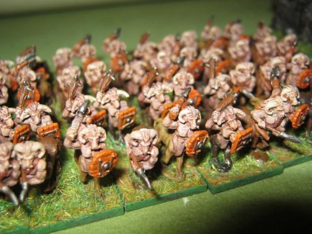 [Achat] Armées complètes peintes 163539IMG1139