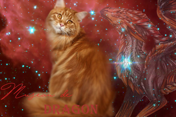 C'est moi, Museau de Dragon ! 164119museaudrgon2
