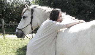 Présentez-nous vos chevaux ! <3 173388ShootingFB17