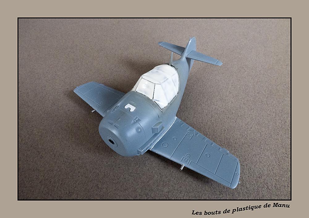 tiger - Bf 109 Tiger Model egg plane-FINI ! 176731P1020021