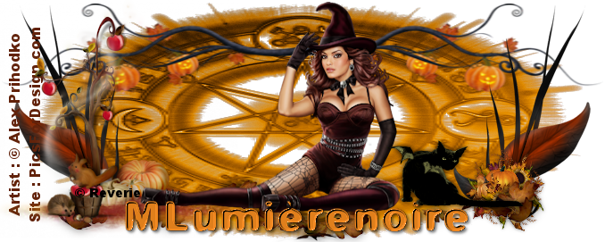 site MLumierenoire 1775692361151413