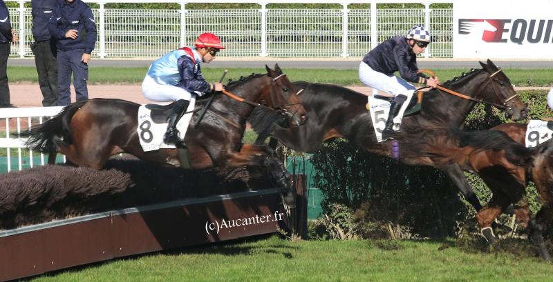 Photos Enghien 22-10-2016 Grand Steeple 1791165J6A9334