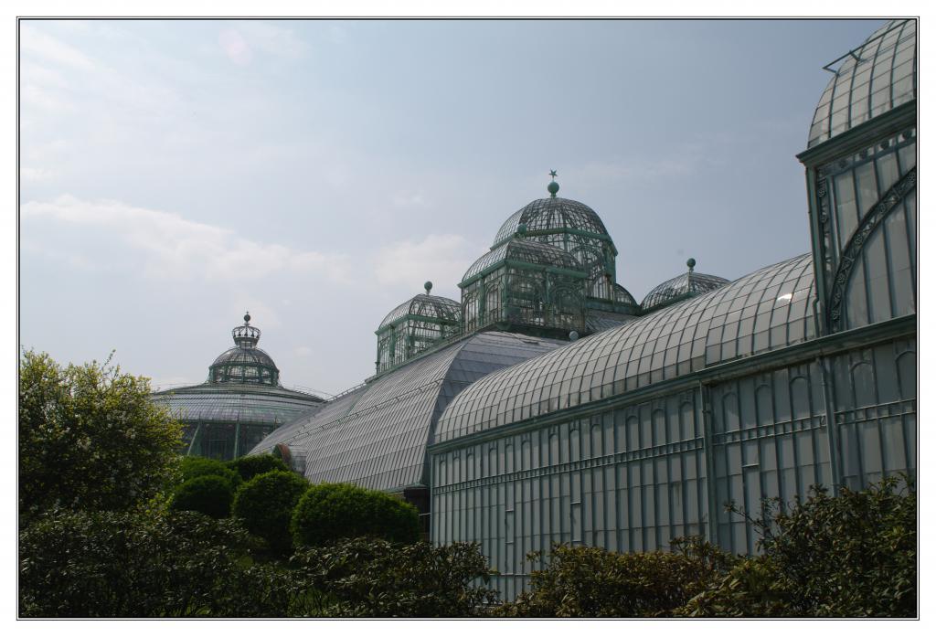 Les serres royales de Laeken 180602IMGP0646a