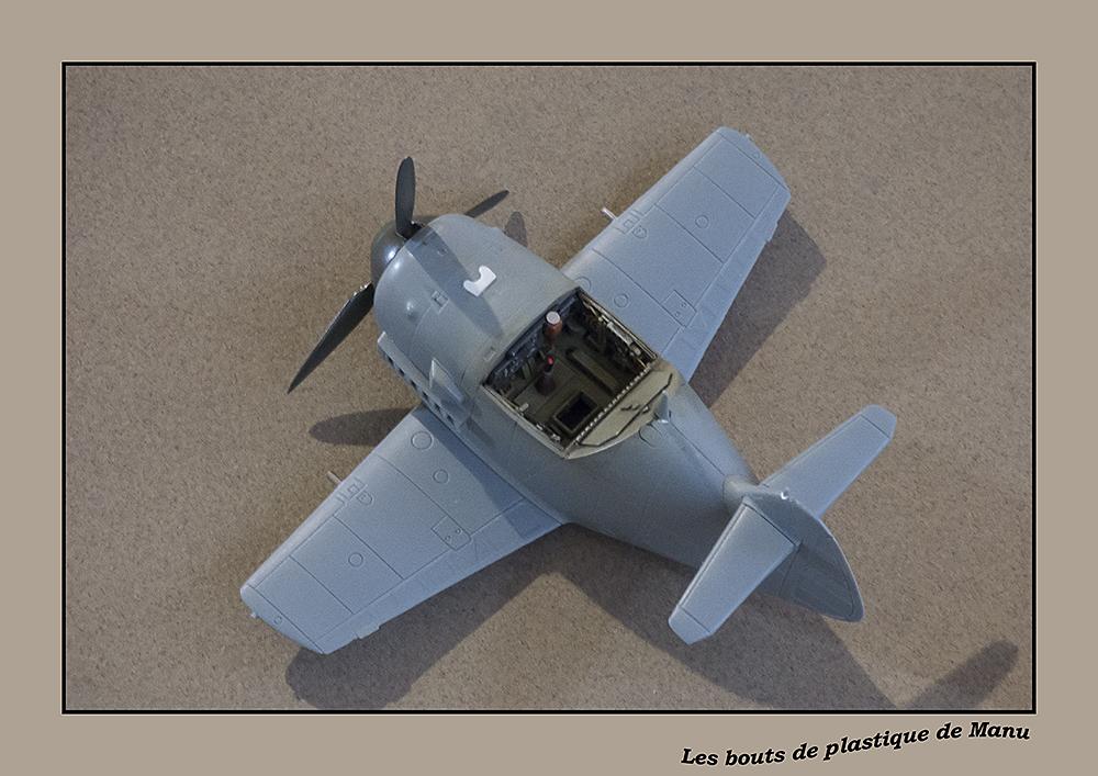 tiger - Bf 109 Tiger Model egg plane-FINI ! 1812067526